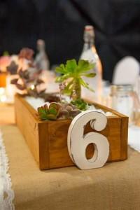 reception_decorations succulent table (Medium)